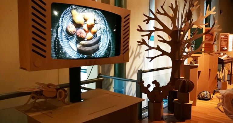 Cartelería en lectura fácil en la Exposición del Museo de ciencias naturales