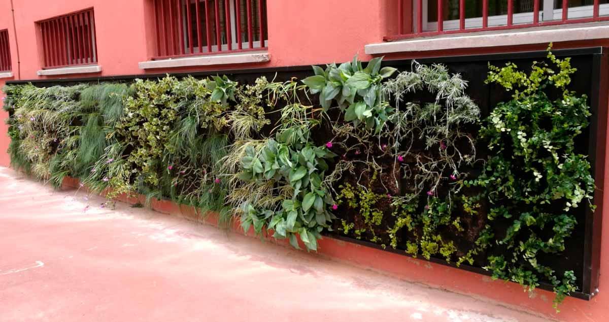 Nuevo jardín vertical, de la mano del EAD San Blas Canillejas