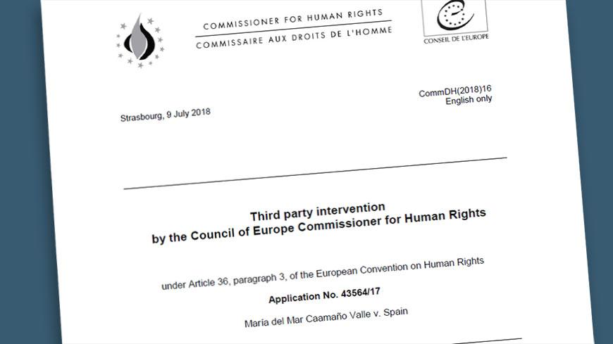 El Consejo de Europa a España:  Nadie debe ser privado de su derecho de voto por razón de discapacidad