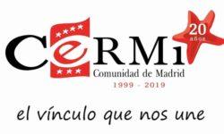 logotipo 20 Aniversario Cermi Madrid.