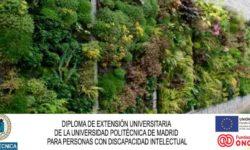 Curso universitario naturación urbana